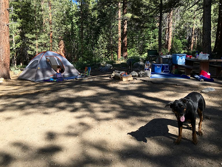 Buckeye Creek Campsite